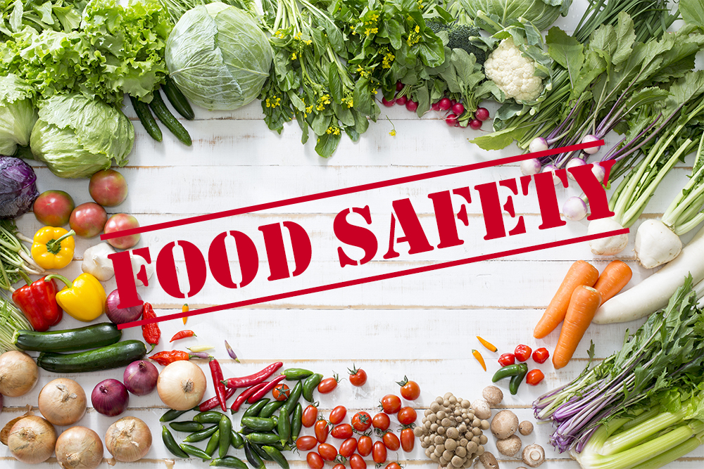 FOOD SAFETY CONSULTING IN LUCKNOW-UP